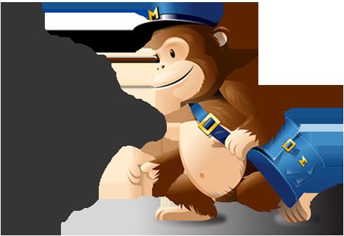 mailchimp_expert